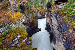 Athabasca Falls Gorge - Canada Stock Image