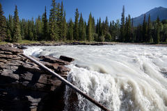 Athabasca Falls- Icefields Parkway- Jasper National Park- Alberta- CA Royalty Free Stock Images