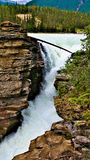 Athabasca Falls Stock Photos