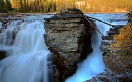 Athabasca Falls in Jasper Royalty Free Stock Image
