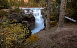 Athabasca Falls in Jasper. National Park, Alberta Stock Image