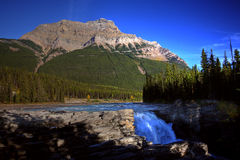 Athabasca Falls in Jasper. National Park Stock Photos