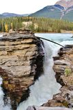 Athabasca falls , Jasper , Alberta Royalty Free Stock Images