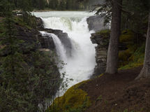 Athabasca Falls Stock Image