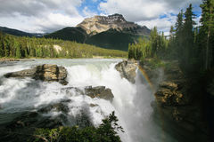 Athabasca Falls. In Jasper National Park, Alberta, Canada stock images