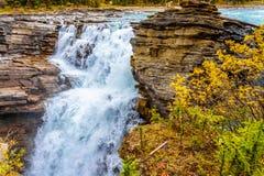 Athabasca Falls Royalty Free Stock Images