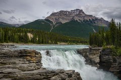 Athabasca falls in Jasper NP, Canadian Rockies Stock Photo