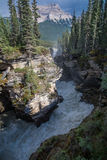 The Athabasca Falls Royalty Free Stock Photos