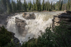 The Athabasca Falls Royalty Free Stock Images