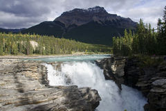 Athabasca Falls near Jasper in Canada Stock Image