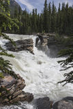 Athabasca Falls. View of Athabasca Falls in Alberta Canada stock photo