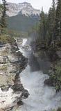 Athabasca Falls 79 82 Stock Photography