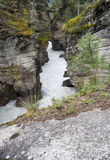 Athabasca falls, view into the gorge Royalty Free Stock Photo