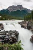 Athabasca Falls Waterfall Royalty Free Stock Image