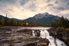 Athabasca Falls Waterfall Stock Images