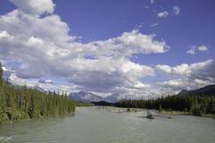 Athabasca flod royaltyfria foton