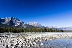 Athabasca flod, Icefield gångallé, Jasper National Park Arkivbild