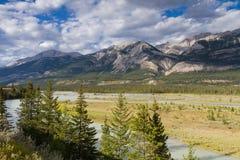 Athabasca flod på Jasper National Park Arkivbilder