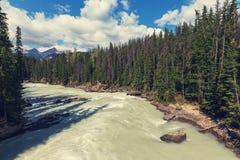 Athabasca Fluss Lizenzfreies Stockbild