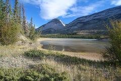 Athabasca Fluss am Jaspis-Nationalpark Stockbild