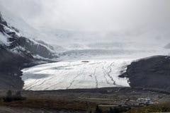 Athabasca glaciär - Columbia Icefield Royaltyfri Bild