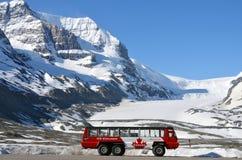 Athabasca glaciär, Columbia Icefield, isutforskare royaltyfri bild