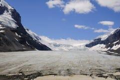 Athabasca glaciär Columbia Icefields Royaltyfri Bild
