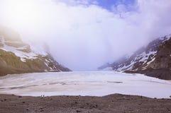 Athabasca glaciär - del av Colimbia Icefield arkivfoto