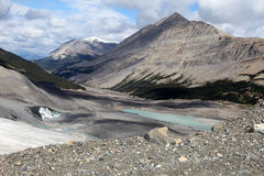 Athabasca glaciär - Jaspernationalpark royaltyfri foto