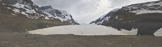 Athabasca Glacier royalty free stock photography