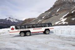 Athabasca Glacier royalty free stock photos