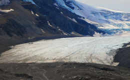 Athabasca Glacier Royalty Free Stock Images