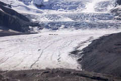 Athabasca Glacier And Columbia Ice Field. The Athabasca Glacier is formed from the ice fall coming from the Columbia Ice Field. The scale is enormous; to show stock images