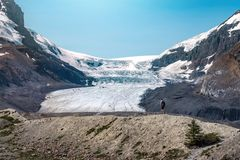 Athabasca Glacier in Jasper National Park, Alberta, Canada royalty free stock photos