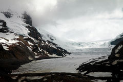 Athabasca glacier in Jasper National Park Royalty Free Stock Photo