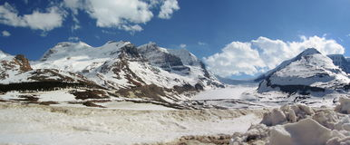 Athabasca Glacier and Mount Alberta in Spring, Jasper National Park, Alberta, Panorama Stock Image