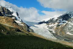 Athabasca glacier from Wilcox Pass Stock Images