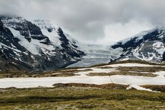 Athabasca glacier from Wilcox Pass Royalty Free Stock Image