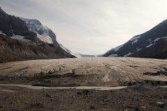 Athabasca Gletscher Lizenzfreies Stockbild