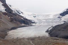 Παγετώνας Athabasca, Κολούμπια Icefield Στοκ Φωτογραφίες