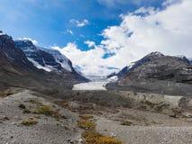 Athabasca lodowiec przy Columbia icefield japser parkiem narodowym Zdjęcia Royalty Free