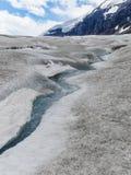 Athabasca lodowiec przy Columbia icefield japser parkiem narodowym Obrazy Stock