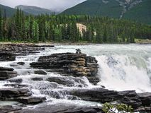 Athabasca nedgångar Arkivbild