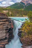 Athabasca nedgångar i Jasper National Park albertan Kanada royaltyfria foton
