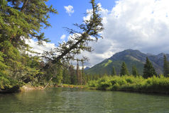 Athabasca River Stock Photo
