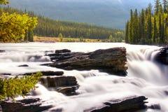 Athabasca River. Athabasca Falls in Alberta (Canada Stock Image