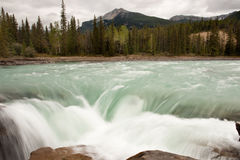 Athabasca River and Falls Stock Photography