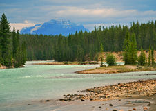 Athabasca River, Jasper, Canada. This is one of the many spectacular views of the Athabasca river in the Rockies to be seen at Jasper. The river is popular for Stock Photography