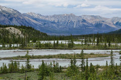 Athabasca River Stock Images