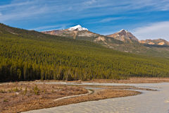 Athabasca River Stock Photos